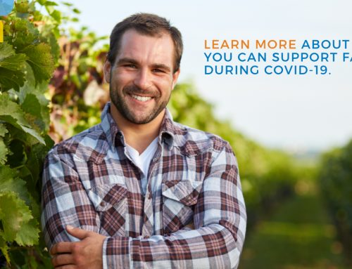 How to Support local farms and farmers During COVID-19